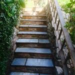 A creative way of forming a hand rail up a steep set of garden steps